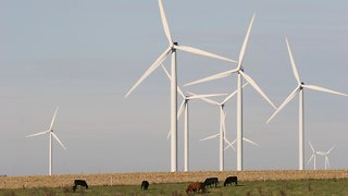 Renewable Energy Is Making More And More Sense