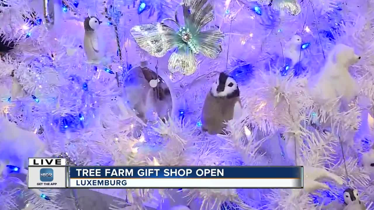 Aissen Tree Farm open for the season