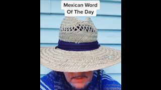 Mexican word Of The Day-Comedian Michael Joiner