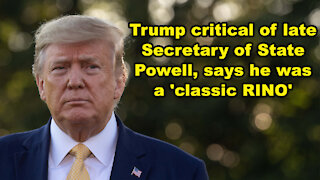 Trump critical of late Secretary of State Powell, says he was a 'classic RINO' - Just the News Now