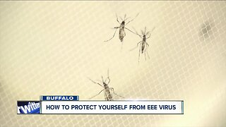 How to protect yourself from the EEE Virus