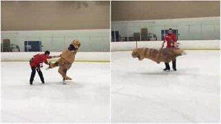 T-rex on ice pulls off acrobatics in California