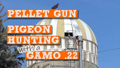 S2:E7 Pellet Gun Pigeon Hunting Saga with GAMO .22 | Kids Outdoors