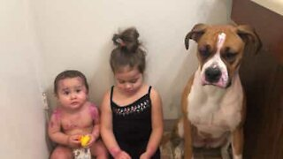 Little girl covers baby and dog with lipstick