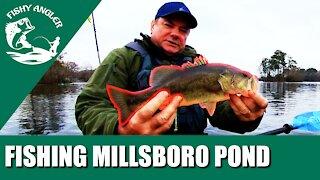 Fishing Millsboro pond Delaware in early spring