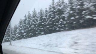 Driving in winter wonderland