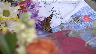 A butterfly release to honor Gabby Petito