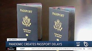 Pandemic creates passport delays