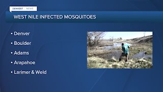 West Nile Virus cases and mosquitoes increasing