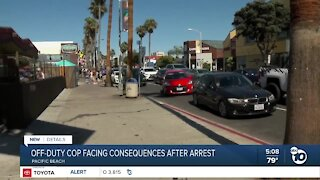 GVRO issued against San Diego Police officer over off-duty arrest