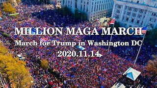 March for Trump | Million MAGA March | Washington DC | 2020-11-14