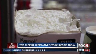 Florida legislative session begins
