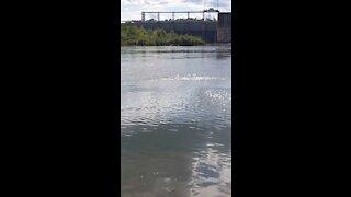 River dam catawba river south carolina
