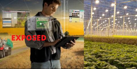 Big Ag - GMO seeds; Patent seeds; Digital Farming EXPOSED