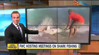 FWC may change shore-based shark fishing rules