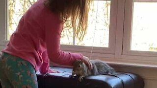 Girl and squirrel are best friends