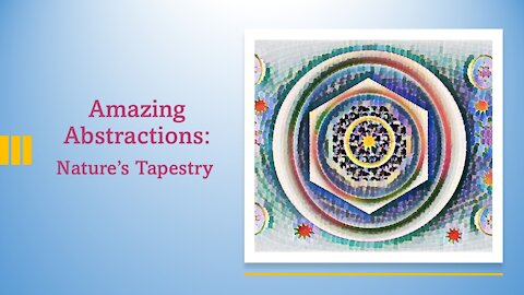 My Portfolio: Amazing Abstractions: Nature's Tapestry