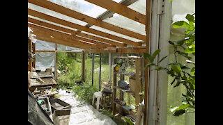 Custom Greenhouse of Sliding Glass Doors - Beautiful!