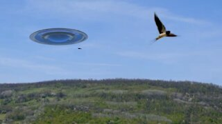 VIDEO UFO RUSSIA NUMBER 2