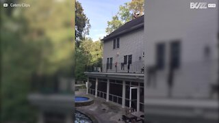 Da non imitare: skater si tuffa in piscina saltando dal tetto di una casa