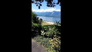 Walking near the swiss lake perfect blue water