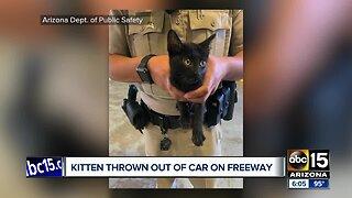 DPS trooper saves kitten thrown from car