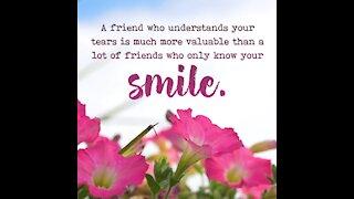 Friend who understands your tears [GMG Originals]