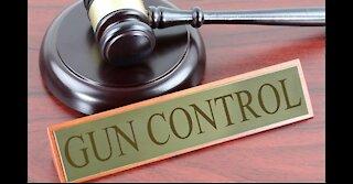 Do We Need Gun Control?