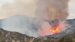 Devastating footage of Palisades Fire in California