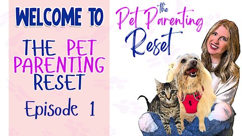 Welcome to the Pet Parenting Reset Podcast - Episode 1