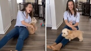 Puppy ecstatic to see owner after three days apart
