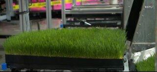 Utah farm impliments vertical farming