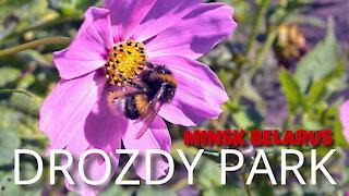 DROZDY PARK - MINSK, BELARUS - 6TH SEPTEMBER 2020