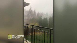 Rain blows across yard during Ontario storm