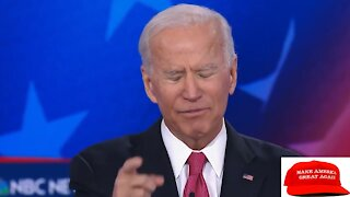 "Sleepy Joe Biden ""Napper's Delight"""