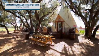 Westgate River Ranch Resort & Rodeo | Giant Adventure