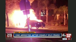 Police: Tampa man charged with DUI manslaughter after deadly, fiery crash