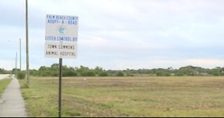 Palm Beach County planning to build new dog park