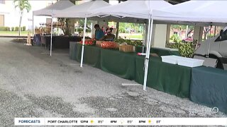 River District Farmers Market returns to downtown Fort Myers every Thursday