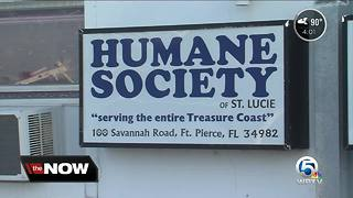 St. Lucie County to do month-to-month contract with Humane Society