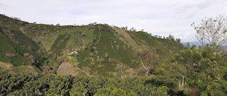 Cordillera Antioqueña, Colombia