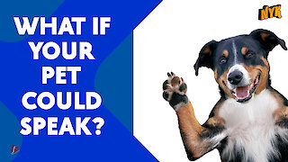 What if your pet could speak?