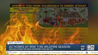 Arizona homes at risk this wildfire season
