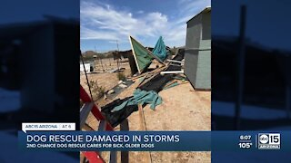 Arizona dog rescue damaged in storms