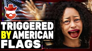 Reporter TRIGGERED By American Flag Gets DEMOLISHED On Twitter