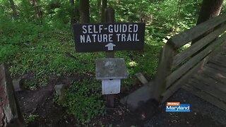 Oregon Ridge Nature Center