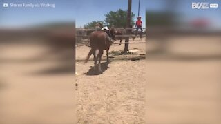 Ce petit cowboy s'endort sur son cheval