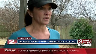 Coyote jumps fence, steals, then kills family dog