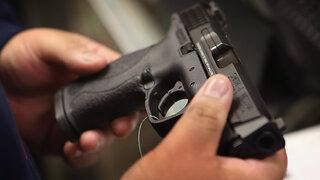 Florida House Democrats seek special session on gun violence