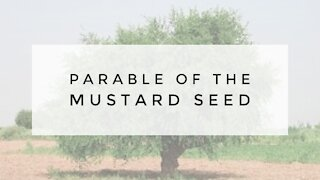10.21.20 Wednesday Lesson - PARABLE OF THE MUSTARD SEED